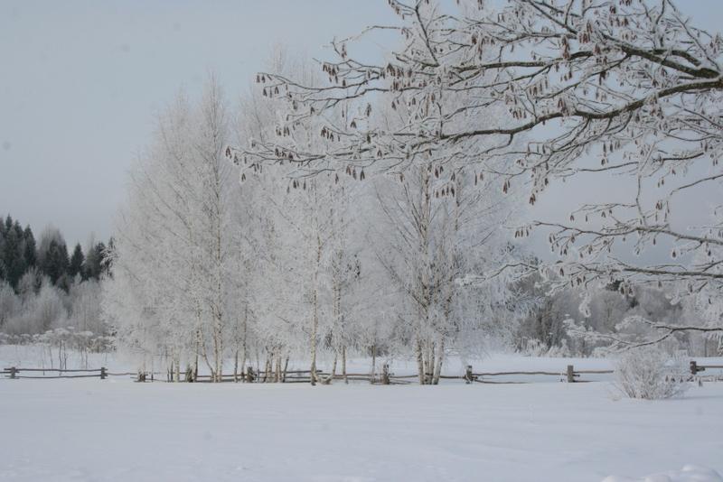 Русская деревня зимой (8)