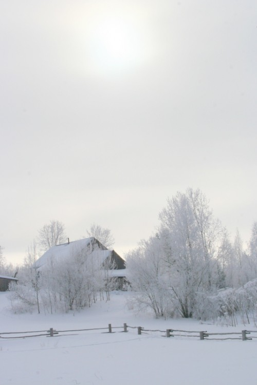 Русская деревня зимой (3)