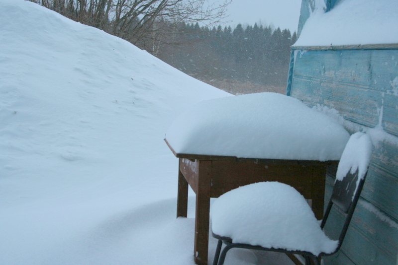 Снегопад в деревне (44)