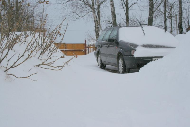 Снегопад в деревне (41)