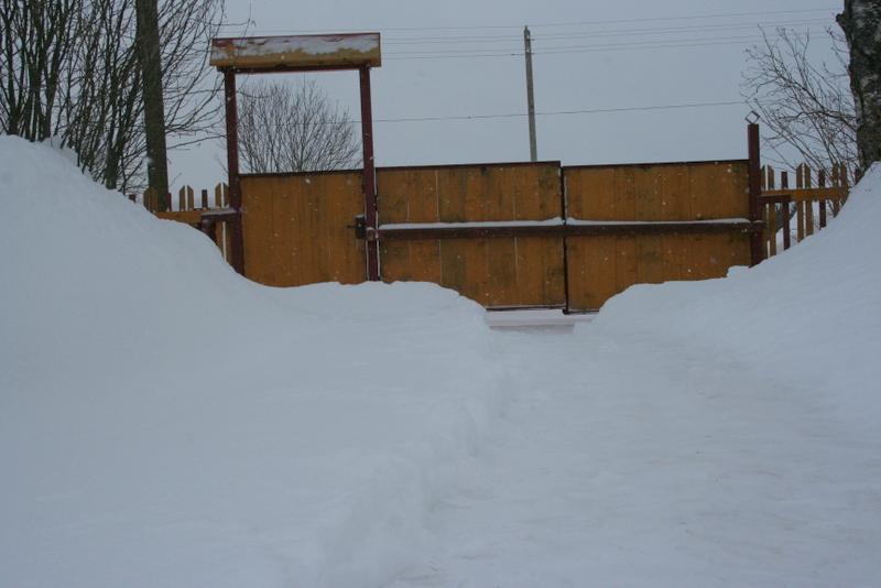Снегопад в деревне (39)