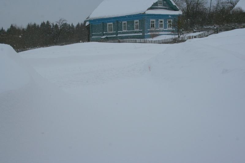Снегопад в деревне (38)