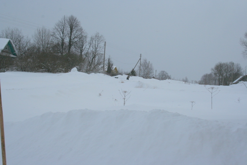 Снегопад в деревне (36)