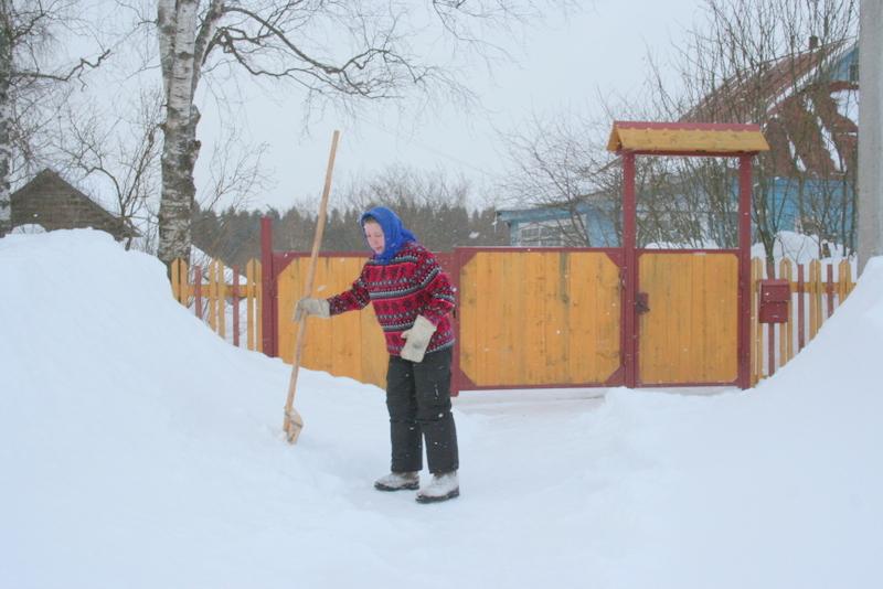 Снегопад в деревне (34)