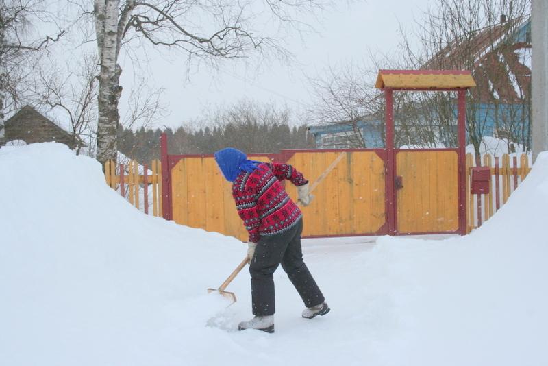 Снегопад в деревне (33)
