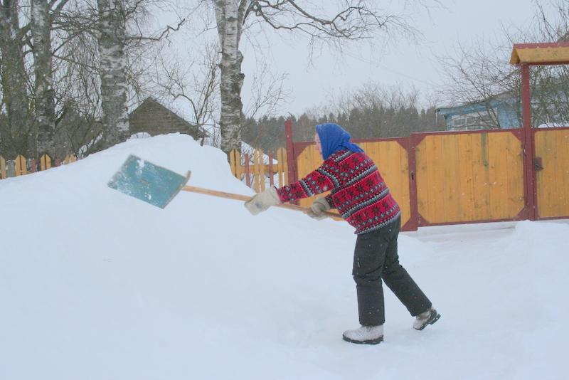 Снегопад в деревне (32)
