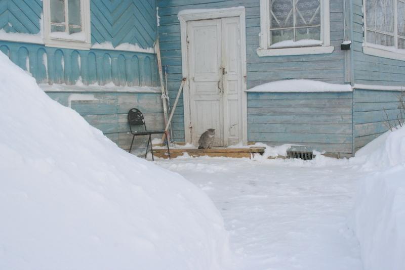 Снегопад в деревне (27)