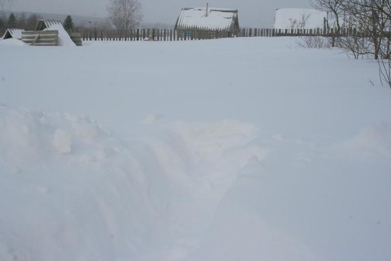Снегопад в деревне (25)