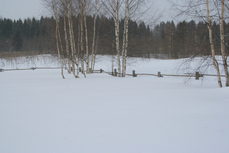 Снегопад в деревне (23)