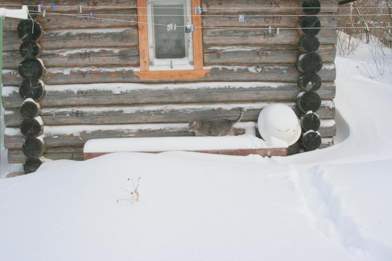 Снегопад в деревне (5)