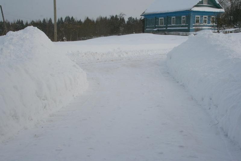 Снегопад в деревне (1)