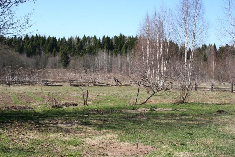 Русская деревня весна (2)