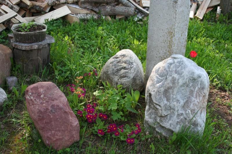 блог о деревне (8)