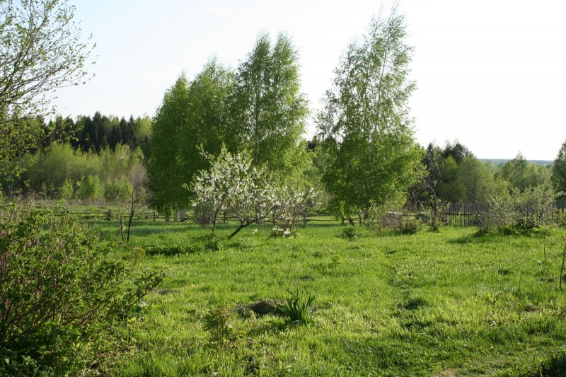 блог о деревне (1)