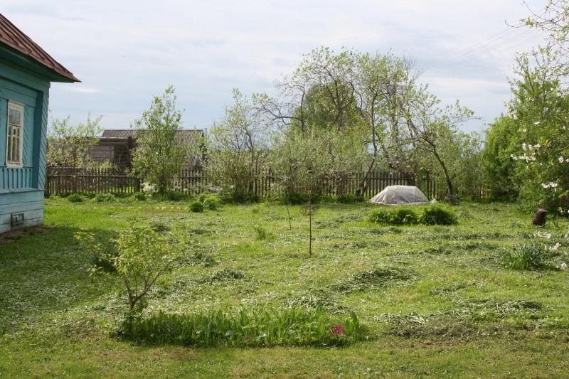 Деревенская весна (7)