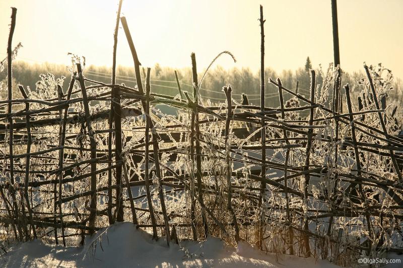 Мороз в Сибири