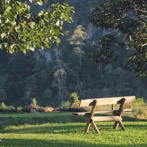 Випассана в лесном монастыре Там Вуа на севере Таиланда