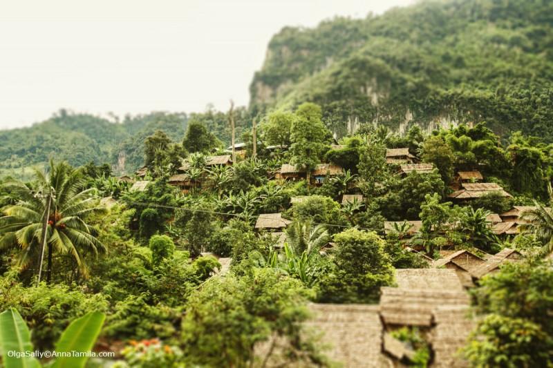 Карены в Таиланде (112)