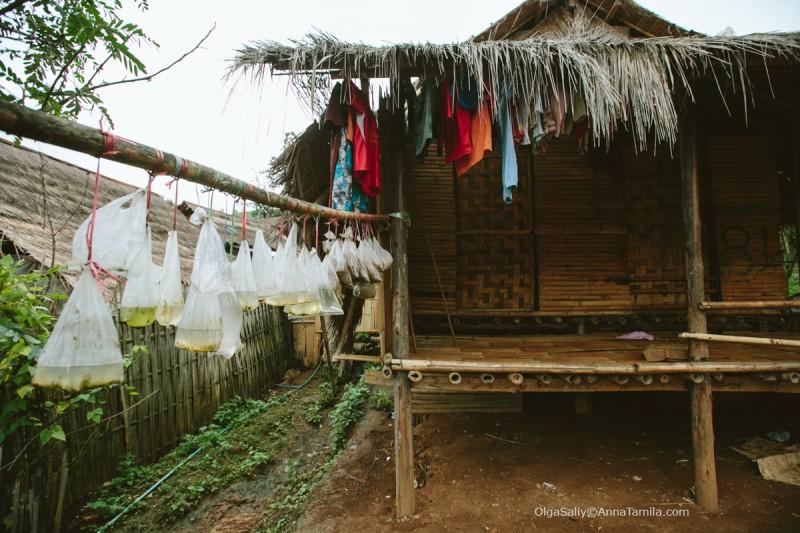 Карены в Таиланде (106)