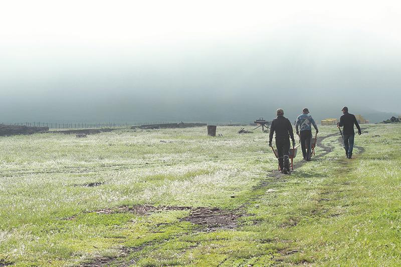 Археологи в Туве