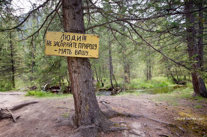 Путешествие по России, горы Алтай (7)