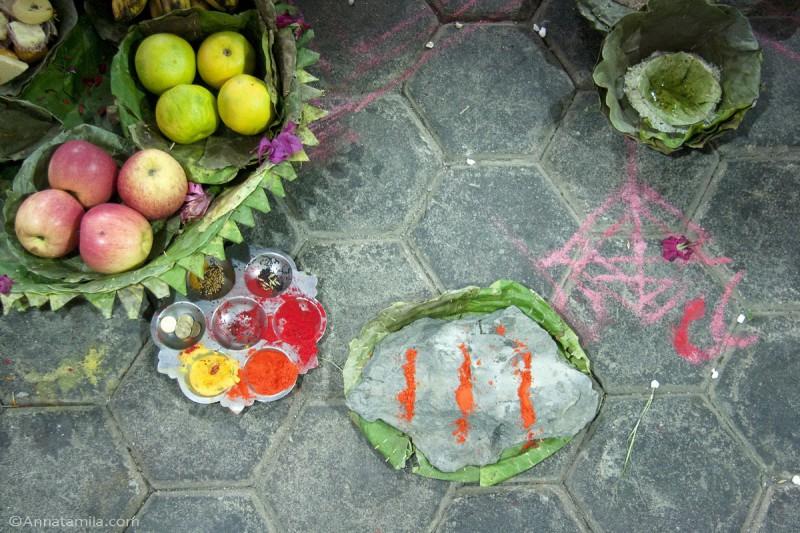 фоторепортаж о непальской свадьбе (40)