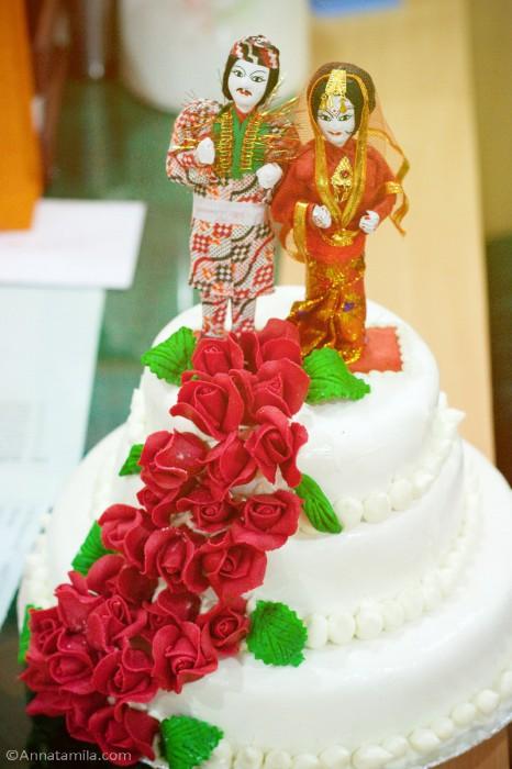 фоторепортаж о непальской свадьбе (7)