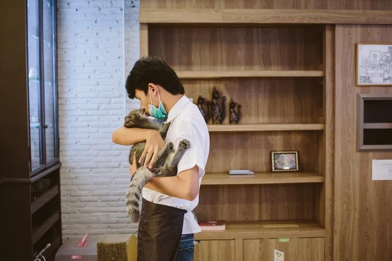Кото кафе в Бангкоке (30)