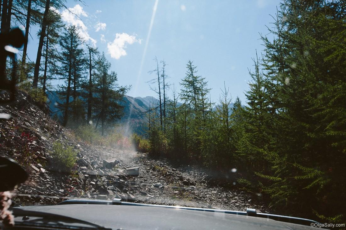 Авто дороги на Алтае (20)