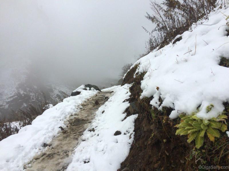 Дорога в районе базового лагеря Мачепучаре в октябре