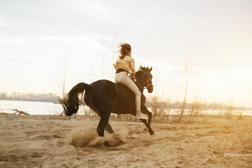 Галопом без седла на лошади, Новосибирск