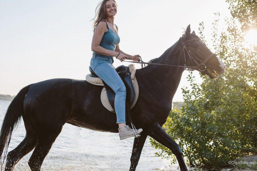 Лошади в Заельцовском бору
