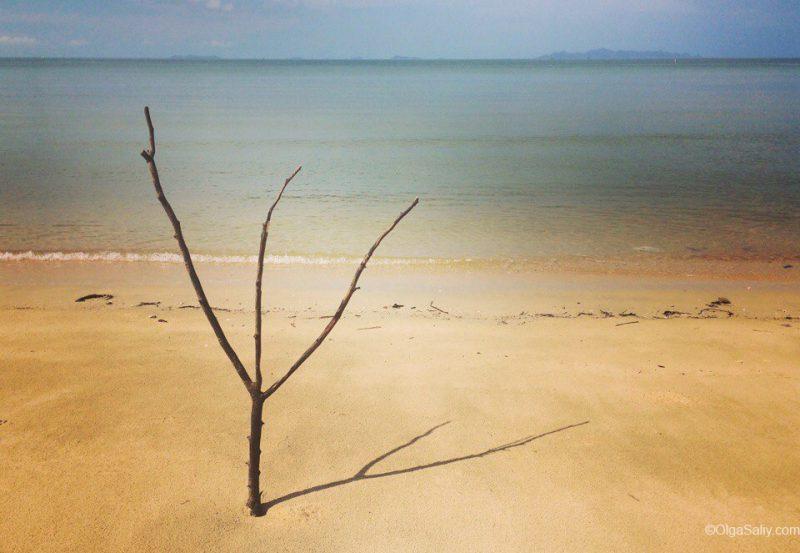 Пляж Липа нои