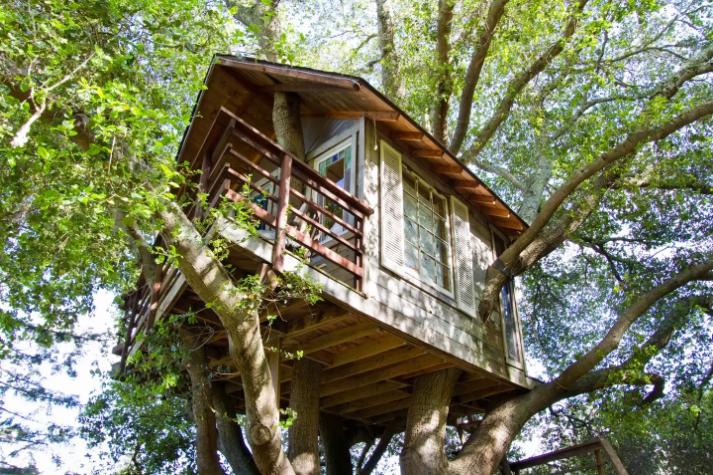 Домик на дереве в Андалусия, Испания