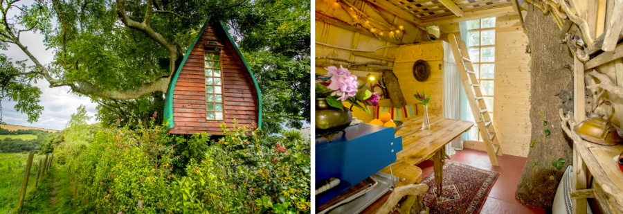 Tree Sparrow House, Cornwall домик в дереве