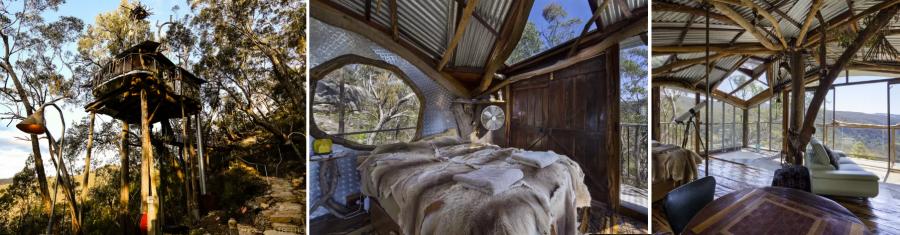 Дом на дереве в горах Австралии
