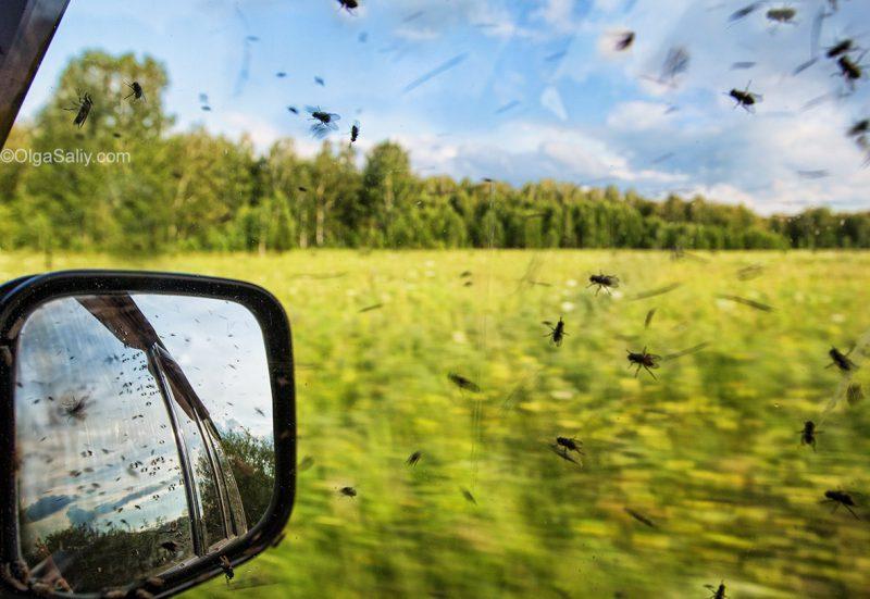 Путешествия по Сибири на Авто
