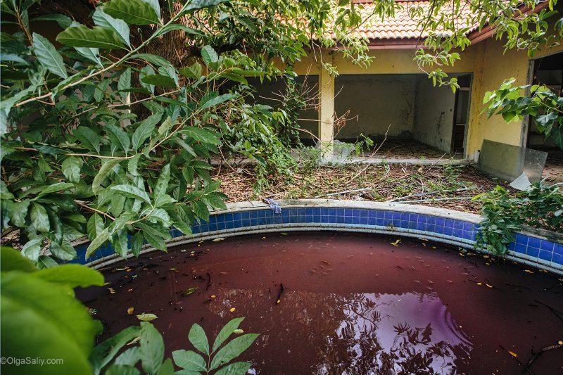 Бассейн с рыбками на Самуи