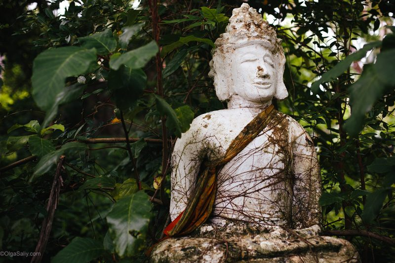 Заброшенные расстрелянные статуи на Самуи. Тайные места острова (8)