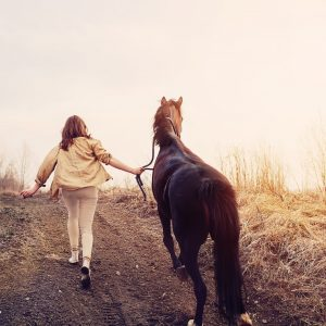 Фотосессия с лошадью Чарой