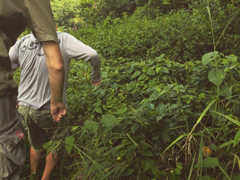 Прогулки по Самуи, тайные места острова (3)