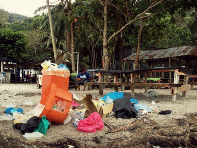 Обезьяний пляж на Пенанге