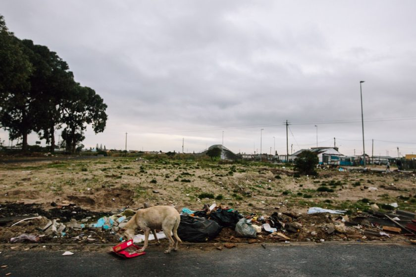 Трущобы Южной Африки, Кейптаун, Калишу (9)