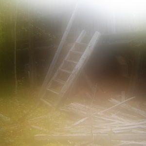 Леса и строения на мысе Картеш