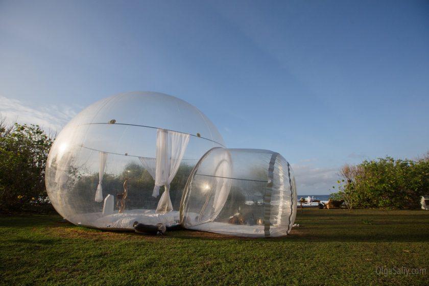 Bubble-house на Бали (8)