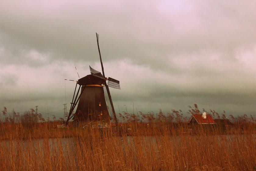 Жизнь в Нидерландах, Амстердам (23)
