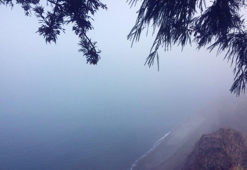 Черное море в Ботаническом саду Батуми