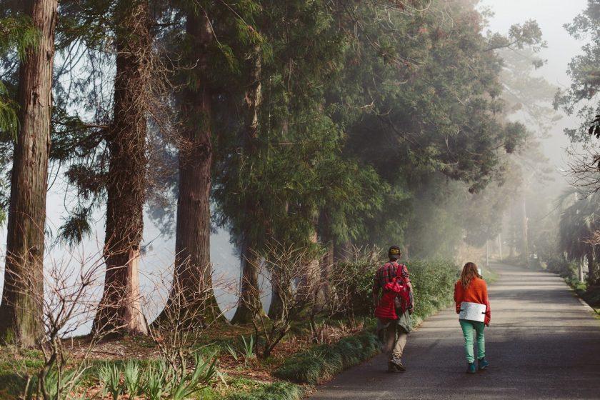 Ботанический сад в Батуми, фото и описание как добраться (10)