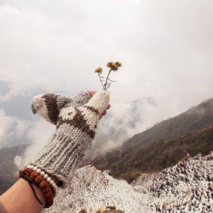 Путь на вью-поинт к лагерю Марди Химал