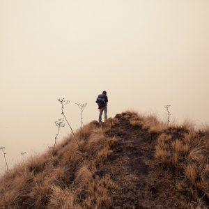 Марди Химал треккинг в Непале (8)